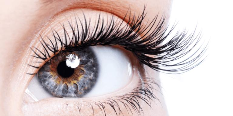 Close up of eye and eyelashes