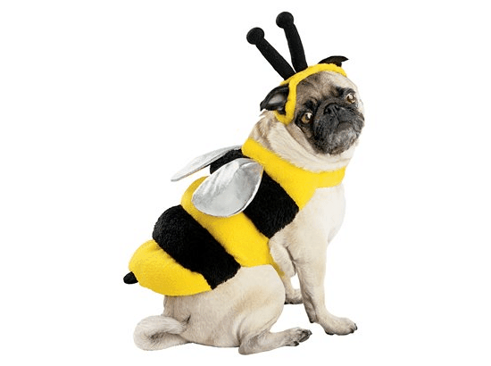 Bee Pet Costume