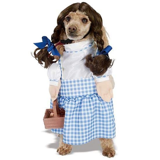 Dorothy Wizard  of Oz Pet Costume
