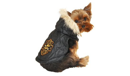 Vest Pet Costume