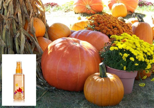 Pumpkin Mist Spray