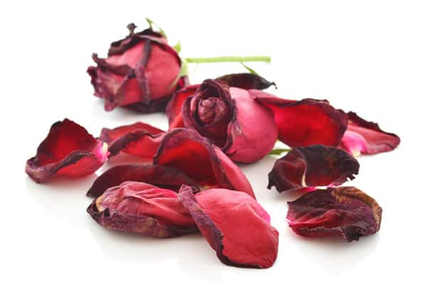 Five Ways to Reuse Your Valentine's Day Roses!