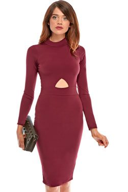 Zaina Cut Out High Neck Bodycon Dress In Wine
