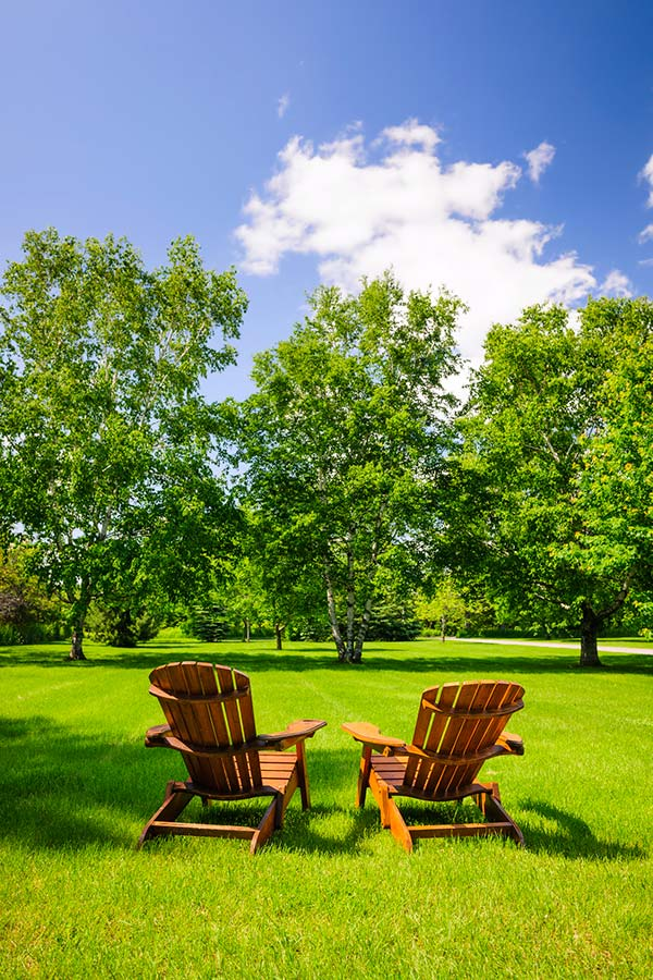 Image of big yard with chairs for a socially distanced party