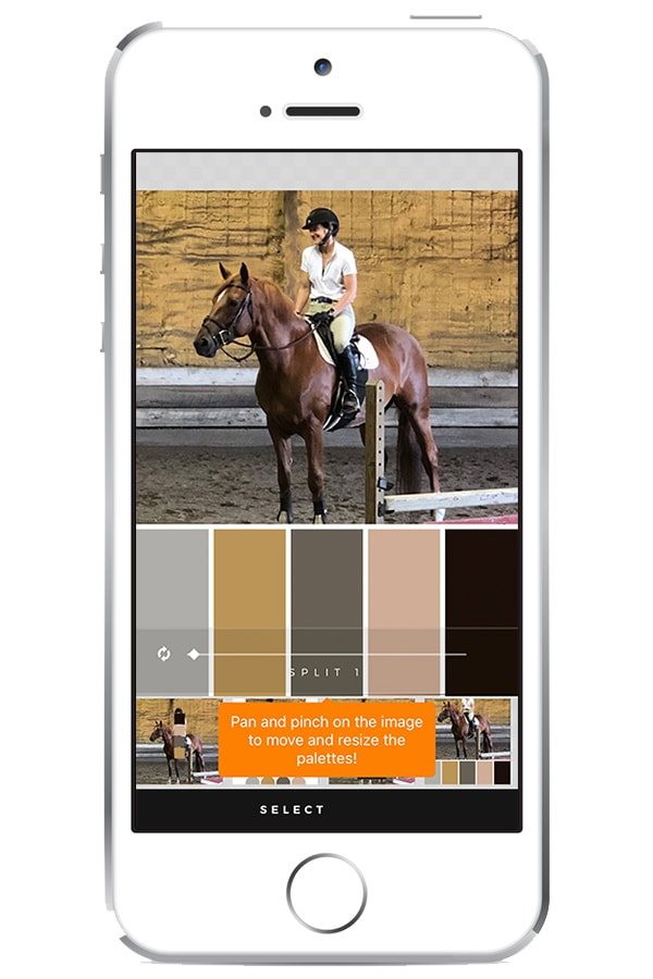 View of one of my favorite apps Palette Republic on iPhone