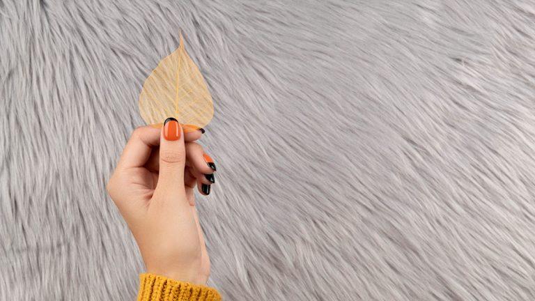 Hand holding leaf
